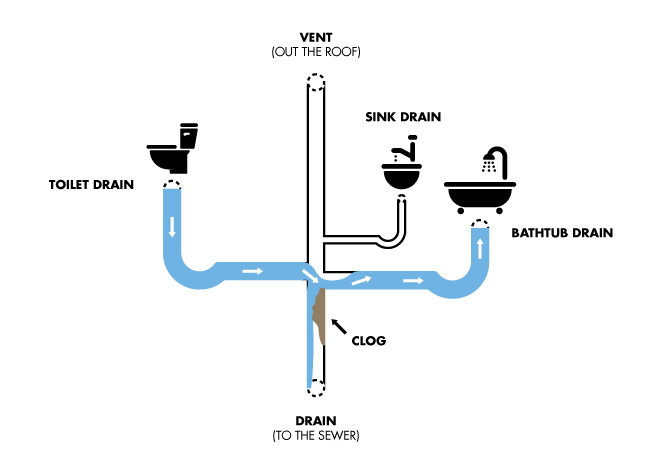 drain diagram bathroom CLEAN2
